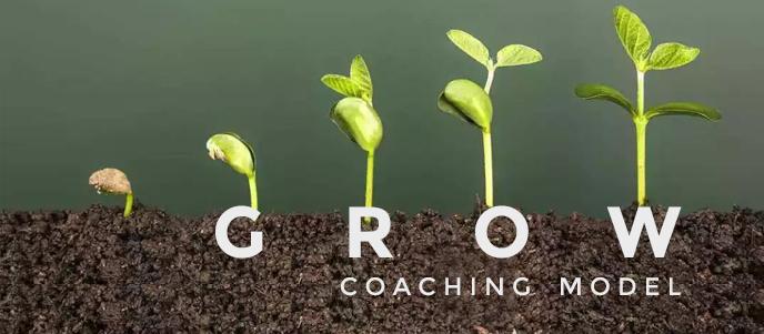 Bagaimana Memakai GROW Coaching Model, apa itu coaching, cara coaching, dan bagaimana menjadi coach dan tahap- tahap coaching yang benar